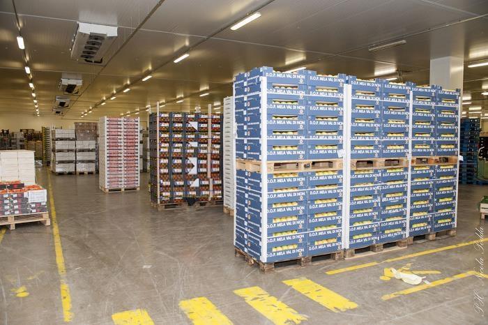 Impianti refrigerazione per Trasporto Alimentare
