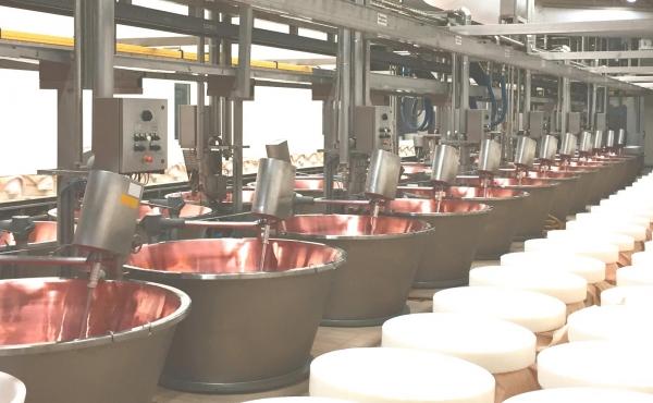Impianti linea latte