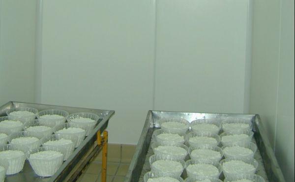 Celle frigorifere industriali per alimenti