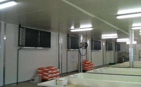 Celle frigorifere produzione formaggi