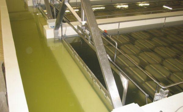 Impianto salatura dinamica per caseificio